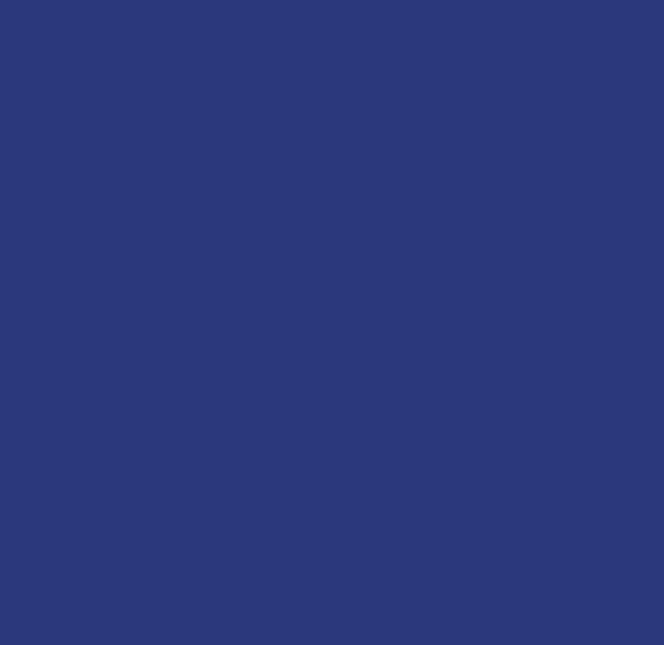 vigga_logo